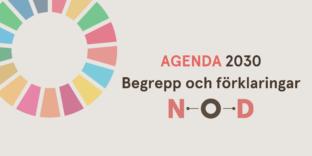 Agenda 2030 begrepp (1)
